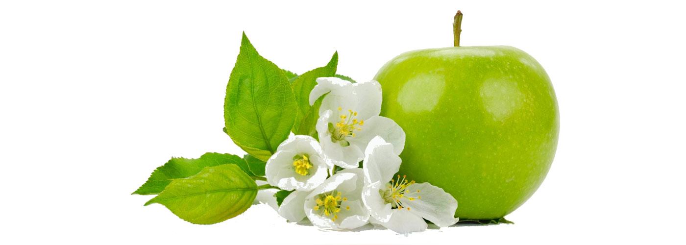 Vocne sadnice jabuke 03